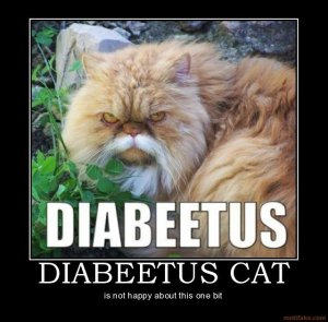 Diabeetus.  You has it.
